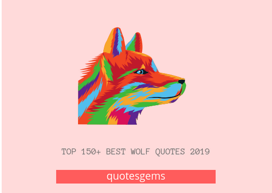 Wolf Quotes 2019